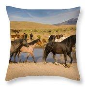 Desert Water Throw Pillow