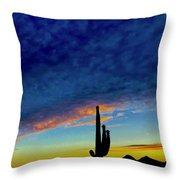 Desert Wave Throw Pillow