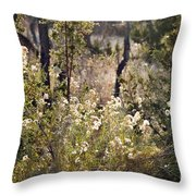 Desert Weeds Throw Pillow