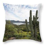 Desert Wildflower View Throw Pillow