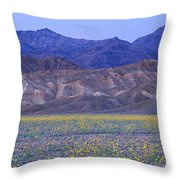 Desert Wildflowers, Death Valley Throw Pillow