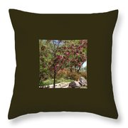 Desert Willow Tree Throw Pillow