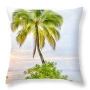Deserted Beach Tioman Throw Pillow