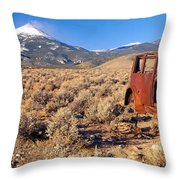Deserted Car With Cow Skeleton, Great Throw Pillow