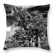 Deserted Tree Throw Pillow