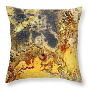 Deserts Of Hope Throw Pillow