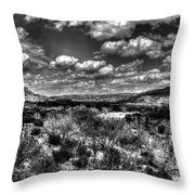 Desertscape Throw Pillow