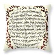 Desiderata 14 Throw Pillow