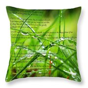 Desiderata 4 Throw Pillow