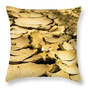 Designs In The Mud Throw Pillow