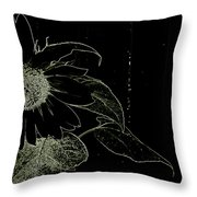 Designs Of Nature Throw Pillow