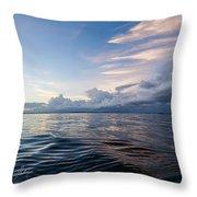 Destin High Tide Throw Pillow