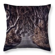 Destined To Wander Throw Pillow