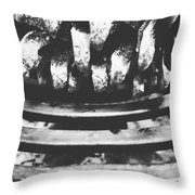Desultory Pine Cone On Old Stove Throw Pillow