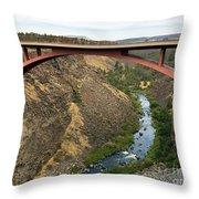 Desutches River Bridge Throw Pillow