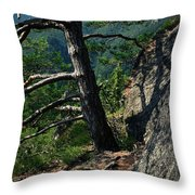 Detail Of A Pine On The Edge Of A Rock Throw Pillow