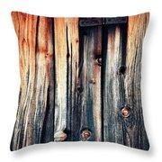 Detail Of An Old Wooden Door Throw Pillow