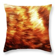 Detail Of Animal Fur Structure, Hand Painted And Graphic Background. Throw Pillow