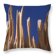 Detail Of Bristlecone Pine Throw Pillow