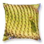 Detail Of Cactus In Galapagos Throw Pillow