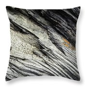 Detail Of Dry Broken Wood Throw Pillow