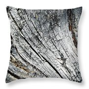 Detail Of Old Weathered Wood Throw Pillow