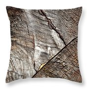 Detail Of Old Wood Sawn Throw Pillow