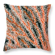 Detail Of Sea Fan, Or Gorgonian Coral Throw Pillow