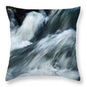 Detail Of Wild Rapid Water Throw Pillow