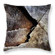 Detail Old Sawn Stump Throw Pillow