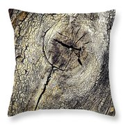 Detail Stumps On Old Wood Throw Pillow