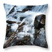 Detail Wild Stream Throw Pillow