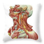 Detailed Dissection View Of Human Neck Throw Pillow