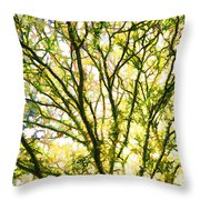 Detailed Tree Branches 1 Throw Pillow