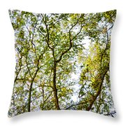 Detailed Tree Branches 5 Throw Pillow