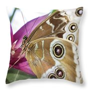 Detailed Wings Throw Pillow