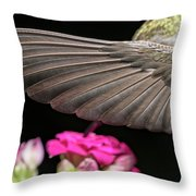 Details Of The Hummingbird Wing Throw Pillow