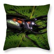 Devil Horned Rhino Beetle Throw Pillow