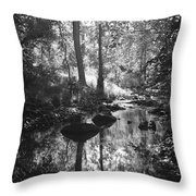 Devil Water In Sunlight Throw Pillow