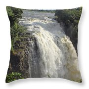 Devil's Cataract Throw Pillow