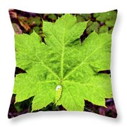 Devil's Club Leaf Throw Pillow