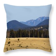 Devil's Head Fire Tower In The Pike National Forest Throw Pillow