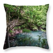 Devil's Millhopper Gainesville Fl II Throw Pillow