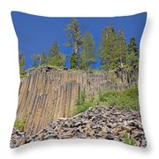Devils Postpile Wide View 2 Throw Pillow