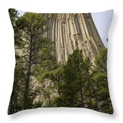 Devils Tower 10 Throw Pillow