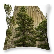 Devils Tower 4 Throw Pillow