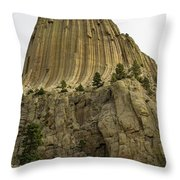 Devils Tower 5 Throw Pillow