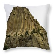 Devils Tower 6 Throw Pillow