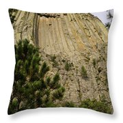 Devils Tower 8 Throw Pillow