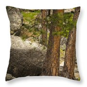 Devils Tower Trees Throw Pillow
